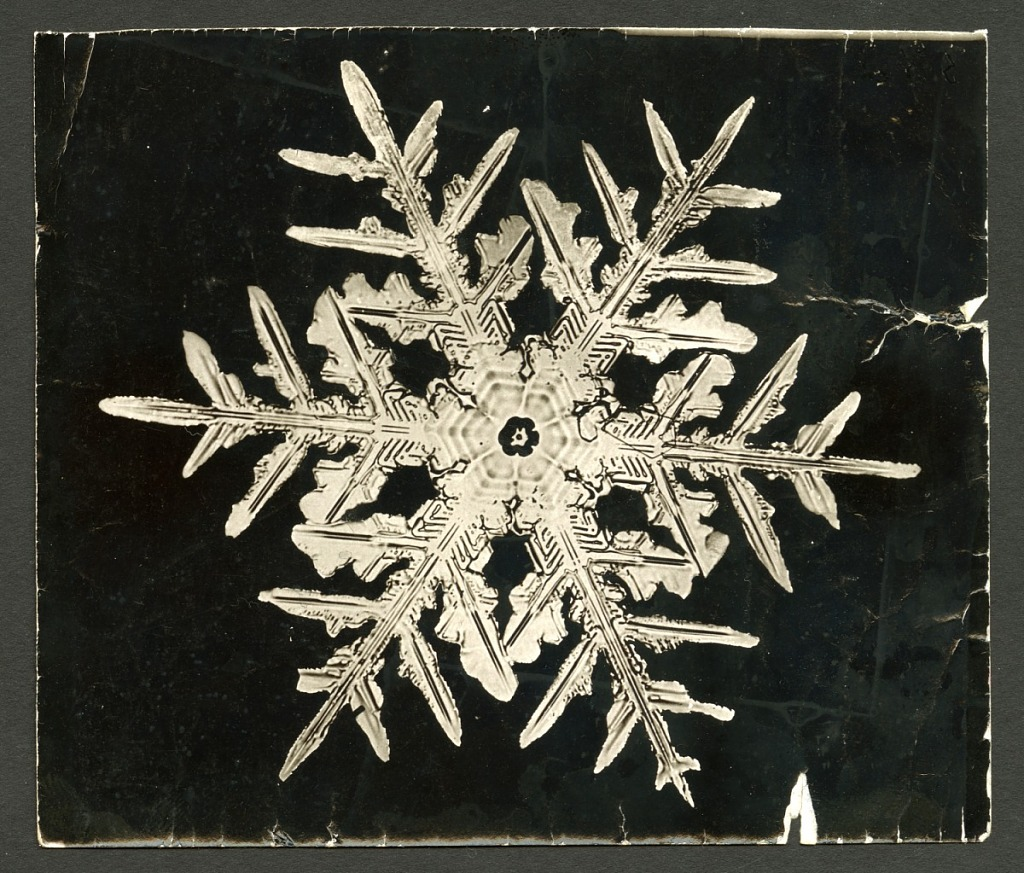 image for Wilson Bentley's Snowflake 332, c. 1890