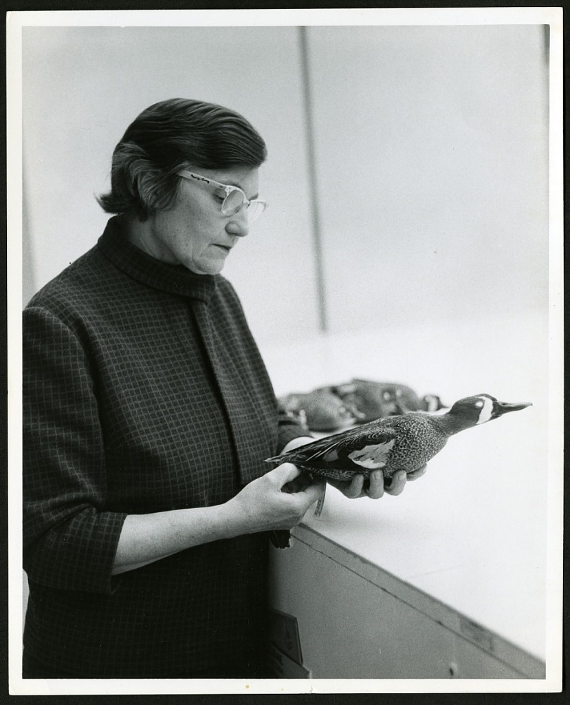 image for Roxie Laybourne Holding a Duck