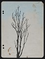 View Sketch of a tree digital asset number 0