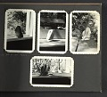View Angelica Archipenko photograph album of Woodstock, N.Y. digital asset: page 52