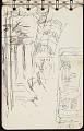 View Sketchbook digital asset: sketch 12