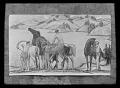 View Bryson Burroughs photographs digital asset: Glass Plate Negatives of Artwork by Burroughs