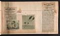 View Alexander Calder scrapbook of press clippings digital asset: page 56