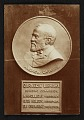 View Bronze portrait medallion of Andrew Carnegie in the Carnegie Library digital asset number 0