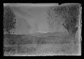 View Alson Skinner Clark papers digital asset: Glass Plate Negatives
