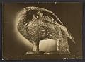 View Lee Bontecou, New York, N.Y. item to Joseph Cornell, Flushing, N.Y. digital asset number 0