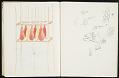 View Domenic Di Mare sketchbook digital asset number 1