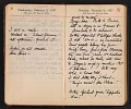 View Helen Torr Dove and Arthur Dove diary digital asset: pages 19