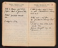 View Helen Torr Dove and Arthur Dove diary digital asset: pages 21