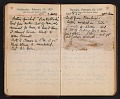 View Helen Torr Dove and Arthur Dove diary digital asset: pages 26