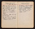 View Helen Torr Dove and Arthur Dove diary digital asset: pages 40