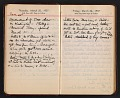 View Helen Torr Dove and Arthur Dove diary digital asset: pages 44