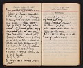 View Helen Torr Dove and Arthur Dove diary digital asset: pages 45