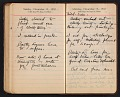 View Helen Torr Dove and Arthur Dove diary digital asset: pages 161