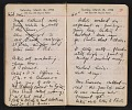 View Helen Torr Dove and Arthur Dove diary digital asset: pages 39
