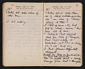 View Helen Torr Dove and Arthur Dove diary digital asset: pages 100