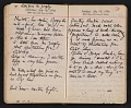 View Helen Torr Dove and Arthur Dove diary digital asset: pages 103