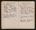 View Helen Torr Dove and Arthur Dove diary digital asset: pages 105