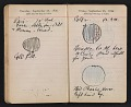 View Helen Torr Dove and Arthur Dove diary digital asset: pages 137