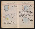 View Helen Torr Dove and Arthur Dove diary digital asset: pages 139