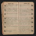 View Helen Torr Dove diary digital asset: pages 17