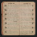 View Helen Torr Dove diary digital asset: pages 41