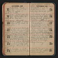View Helen Torr Dove diary digital asset: pages 42