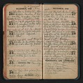 View Helen Torr Dove diary digital asset: pages 45