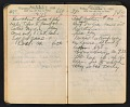 View Arthur Dove diary digital asset: pages 110