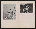 View Paintings by William Gropper digital asset: pages 4
