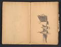 View Ellen Day Hale sketchbook digital asset: pages 9