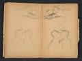 View Ellen Day Hale sketchbook digital asset: pages 58