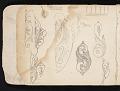 View William Michael Harnett sketchbook digital asset: sketch 2