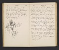 View William Penhallow Henderson diary digital asset: pages 79