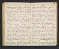 View William Penhallow Henderson diary digital asset: pages 110