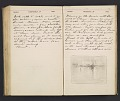 View William Penhallow Henderson diary digital asset: pages 161
