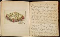 View Grace Anna Storrs Hunt travel diary digital asset: pages 37
