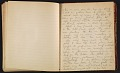 View Grace Anna Storrs Hunt travel diary digital asset: pages 44