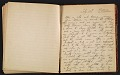 View Grace Anna Storrs Hunt travel diary digital asset: pages 48