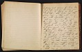 View Grace Anna Storrs Hunt travel diary digital asset: pages 51