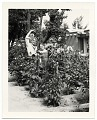 View John and Dolly Sloan posing in the garden of their Santa Fe ranch digital asset number 0