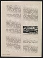 View Kootz Gallery scrapbook #5 digital asset: page 94