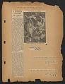 View Kootz Gallery scrapbook #3 digital asset: page 11