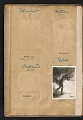View Walt Kuhn scrapbook of artworks from the Armory Show digital asset: page 5