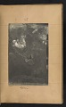 View Walt Kuhn scrapbook of artworks from the Armory Show digital asset: page 20