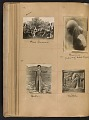 View Walt Kuhn scrapbook of artworks from the Armory Show digital asset: page 35
