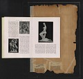 View Walt Kuhn scrapbook of press clippings documenting the Armory Show, vol. 2 digital asset: page 270