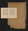 View Walt Kuhn scrapbook of press clippings documenting the Armory Show, vol. 2 digital asset: page 364