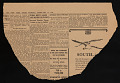 View Arts Council of Japanese Americans for Democracy digital asset number 4