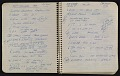 View Notebook of Leo Castelli digital asset: pages 4